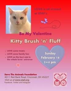 Brush-N-Fluff flyer